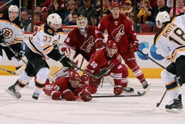Bruins coyotes 2